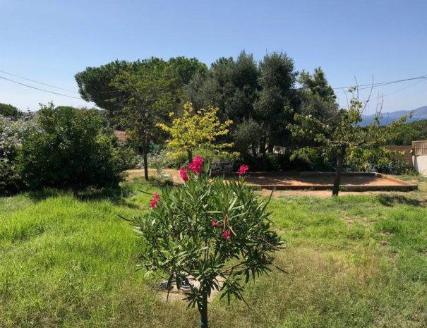 jardin-location-vacances-porticcio